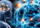 برگزاری هشتمین کنگره علوم اعصاب پایه و بالینی