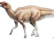 کشف ردپای یک دایناسور در یورکشایر