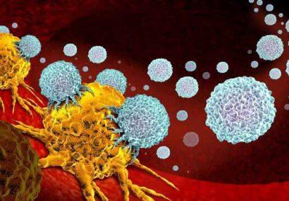 ساخت یک مولکول مهندسی شده برای درمان سرطان